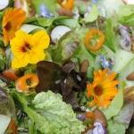 Salade met eetbare bloemen ©CocoOltra
