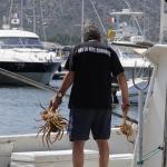 Saint Florent visser ©CocoOltra